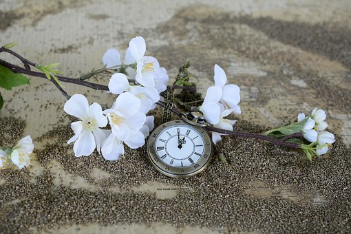 flowers-and-pocket-watch-1637392__340